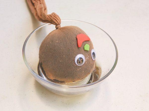 آموزش کاشت سبزه عروسکی برای سفره هفت سین - چندماهمه