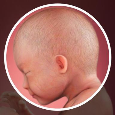 مغز کودکتان مشغول توسعه میلیاردها نورون است.