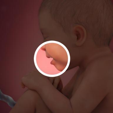 کودک این موها و مایع ورنیکس را می بلعد که در اولین کارکردن روده خواهد بود.