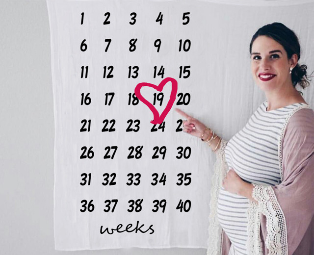 پارچه هفته شمار بارداری